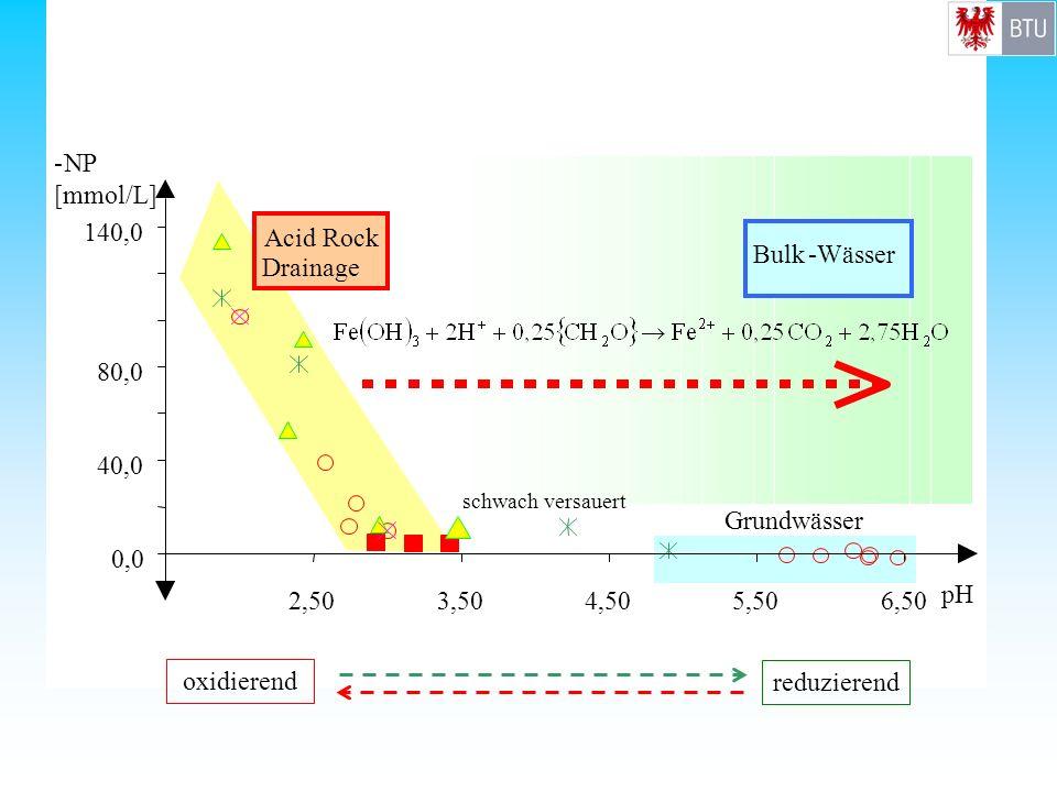 - NP [mmol/L] 140,0 Acid Rock Drainage Bulk - Wässer 80,0 40,0